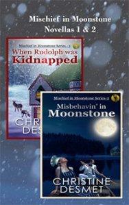 2 Novella cover image